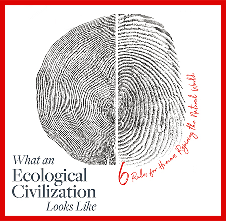 WHAT DOES AN ECOLOGICAL CIVILIZATION LOOK LIKE?